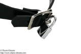 Anatomic formed rubber jewelry collar option lockable